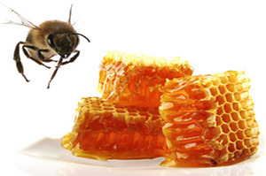 Popular Bee Propolis Extract - Lyphar.png